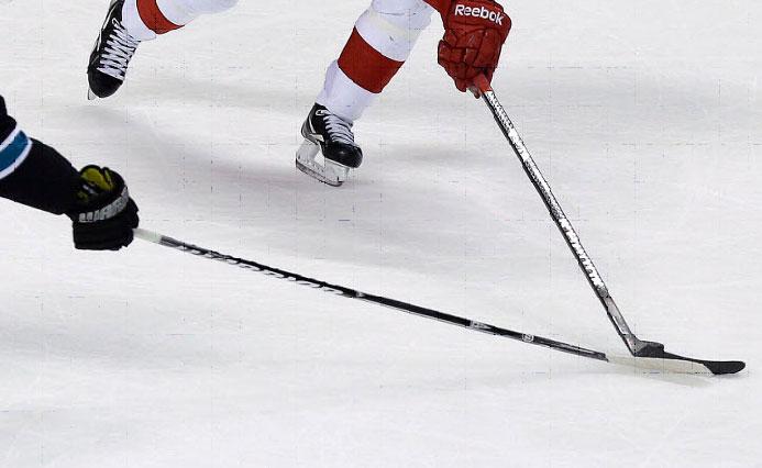 Délka hokejky